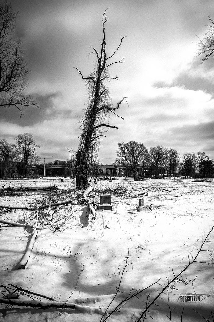 snowday_023-Edit copy