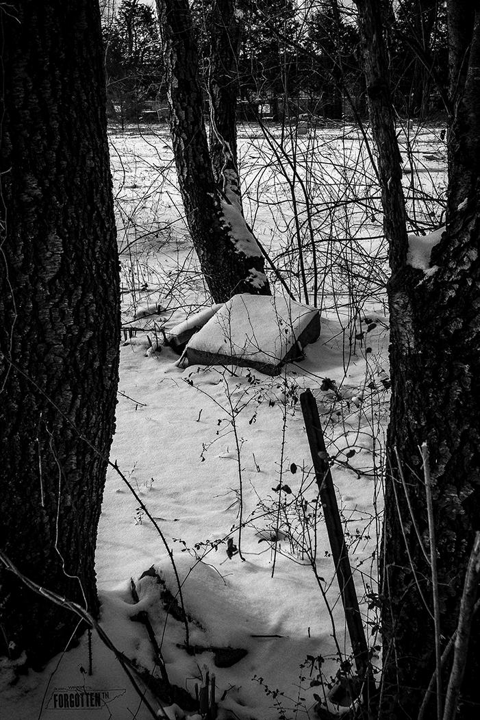 snowday_044-Edit copy