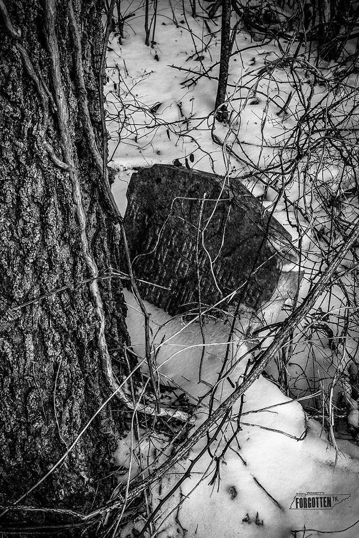 snowday_048-Edit copy